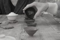photo de thé 9